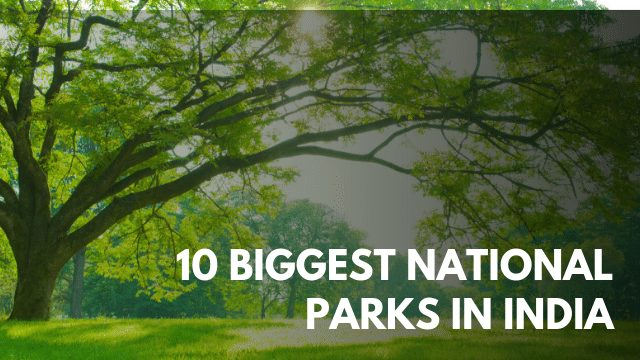 10 Biggest National Parks in India