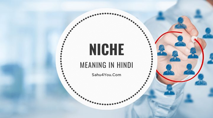 What is Niche Meaning Kya Hai